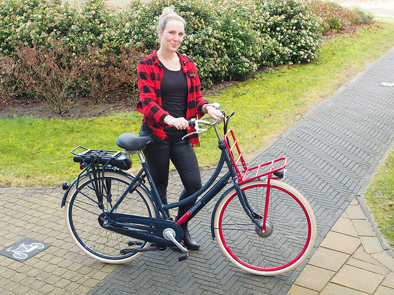 Een fiets van de bouwmarkt of van de tweewielerspecialist? Deze e-bike in een transporteruitvoering van Batavus kost € 1449,-. Info: (https://www.batavus.nl/elektrische-fietsen/cnctd-e-go.htm) Gamma stunt deze week met een soortgelijke elektrische cargofiets voor de prijs van €799,-. Info: https://www.gamma.nl/assortiment/auto-fiets/fietsen/elektrische-fietsen/c/auto-en-fiets_fietsen_elektrische-fietsen. Het grote prijsverschil van €650,- zit 'm in het eveneens grote verschil in de kwaliteit van de technische componenten (remmen, batterij, verlichting, versnellingen), storingsgevoeligheid, afwerking (bekabeling), actieradius, garantie en service. Door uitvergroting van de foto's op de websites van Batavus en de Gamma kun je de kwaliteitsverschillen goed zien en helemaal als je de twee fietsen naastelkaar zet en goed bestudeerd.
