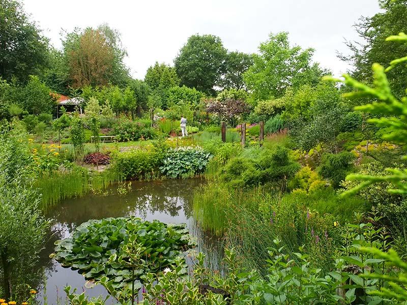 De Friese tuin van het jaar 2016, De Oevertuin van de familie Van den Oever aan de Steennwijkerweg 121 in De Blesse (gemeente Weststellingwerf). Info: www.deoevertuin.nl