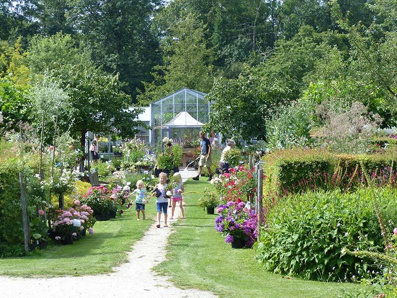 Florissant friesland tuinen en parken