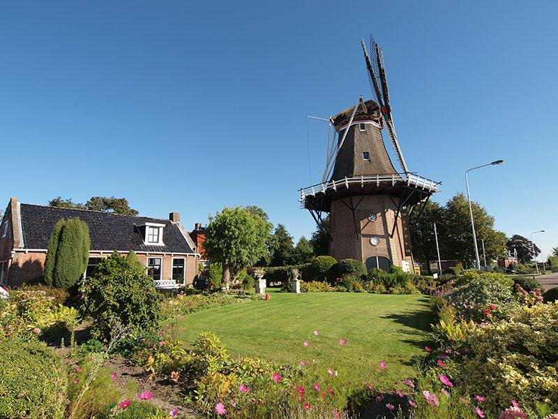 Fleurig Friesland: Anjum (Anjumer molen, Markant Friesland Route)