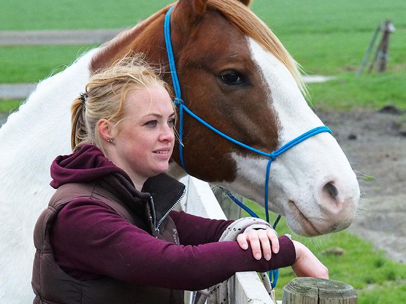 Femke krijgt de neuzen van paarden en mensen dezelfde kant op.