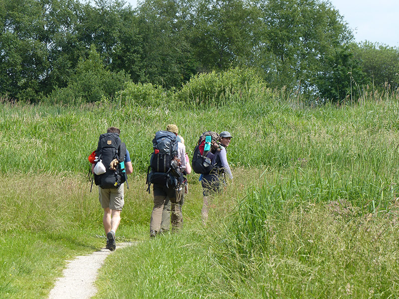 """Nederland telt 6,6 miljoen actieve wandelaars. Het aantal wandelsporters stijgt nog steeds. Ze geven tussen de 30 en 40 euro per dag uit. Gemiddeld lopen wandelaars tussen de 10 en 25 km per dag. """"Geen andere vorm van recreatie is zo gemakkelijk beoefenbaar, goedkoop, gezond en brengt je zo dicht bij de natuur en cultuur van een streek,"""" vindt toerismewethouder Frans Kloosterman (CDA) van de uitgestrekte natuurgemeente Weststellingwerf (Drentse Friese Wold, Rottige Meente, Weerribben). Hij wil dat Wolvega en Noordwolde de uitvalsbases worden van zeer bijzondere wandelvakanties. In de dorpen en in de omgeving zijn veel hotels, bed and breakfasts, groepsaccommodaties en campings. Foto: natuurgebied Rottige Meente, een geheel met Nationaal Park Weeribben-Wieden."""