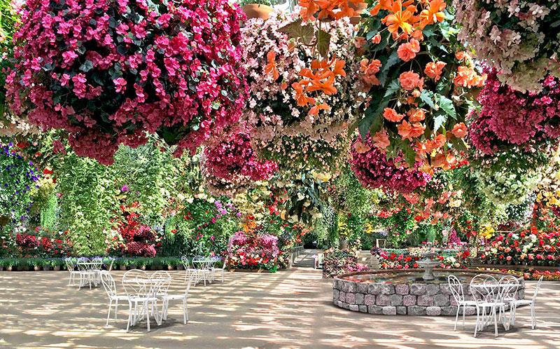 De Orchideeen Hoeve breidt park uit met zwevende bloementuin