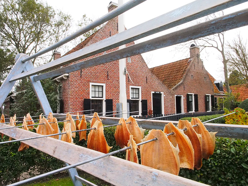 Wie alles wil weten van het vissersbestaan aan de Friese waddenkust kan tot en met zaterdag 31 oktober van 10.00-17.00 uur terecht in 't Fiskerhúske in Moddergat. Daarna begint de winterstop.
