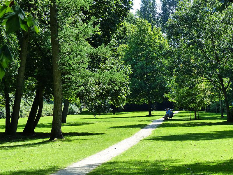 Een kijkje in de 'achtertuin' van het Lycklamahûs. Fotografie: Friesland Holland News.