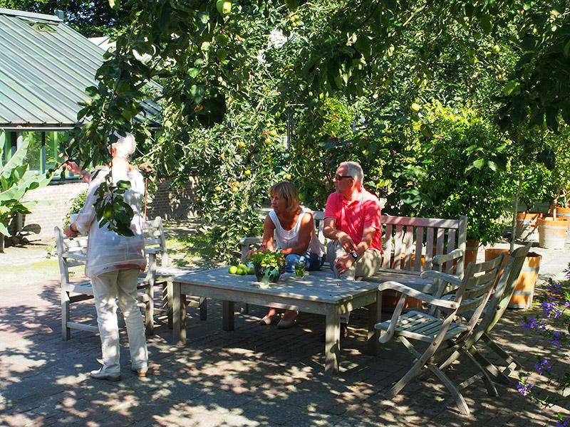 Aan de zuidkant van de Tropische kas ligt de boomgaard met twee hoogstam appelbomen: Reinette Herrant en Notarisappel. Het terrein wordt 's zomers aangekleed met kuipplanten die overwinteren in de koude kas of oranjerie. In de boomgaard worden markten georganiseerd: groenmarkt, boekenmarkt en appelmarkt. Fotografie: Friesland Holland News.