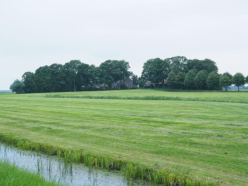 Jannum heeft een bewoningsgeschiedenis die mogelijk teruggaat tot 3.000 voor Christus. Er wonen vanaf morgen, vrijdag 5 augustus 2016, slechts twee mensen in het kleinste dorp van de wereld.