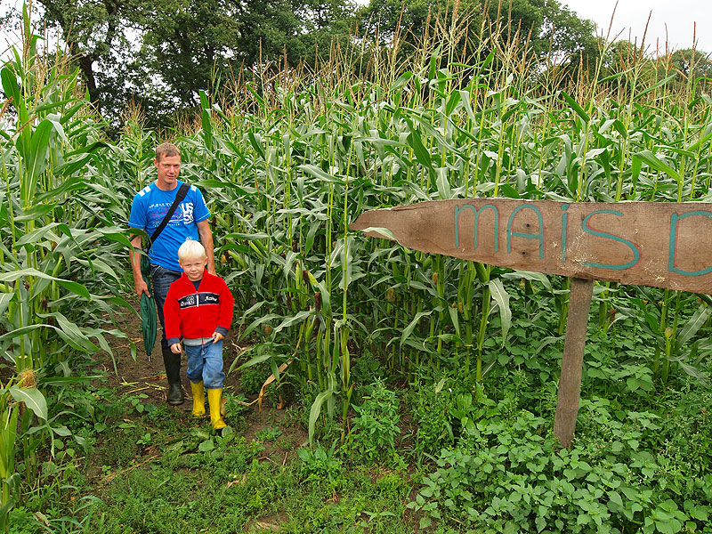 Anne Boltjes en zijn 5-jarig zoontje Arnold in het maisdoolhof van Veenklooster (tegenover de ingang van lanbouwmuseum De Brink