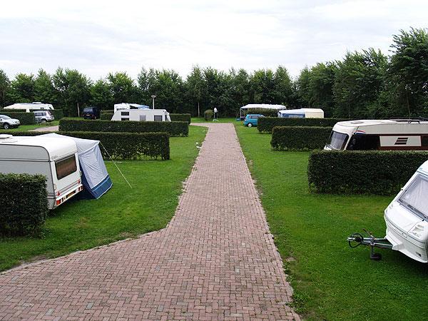 Boerencampings hebben de boel steeds vaker goed voor elkaar. In het Lemsterhop, het voormalige buitendijkse buitengebied van Lemmer in de Noordoostpolder, runnen Geert en Anneke Dijkman een multifunctionele boerderij, dat wil zeggen een zorgboerderij en een camping.