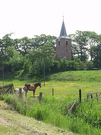 """In Friesland heet een historische woonheuvel """"terp"""", in Groningen """"wierde"""". Op de foto terpdorp Raard ten oosten van Dokkum."""