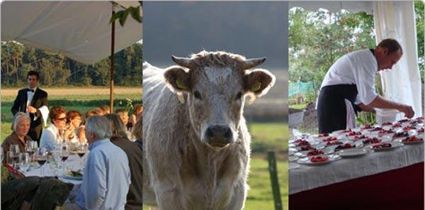 Boergondisch Fryslân: Dineren in de stal, de wei of in de schuur