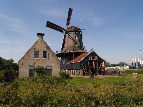 Houtzaagmolen De Rat is 300 jaar in bedrijf. Zaterdag 14 mei 2011 worden in de molen, van 's morgens tien tot 's nachts twaalf uur, zaagdemonstraties gegeven en rondvaarten met een skûtsje en pramen gehouden.