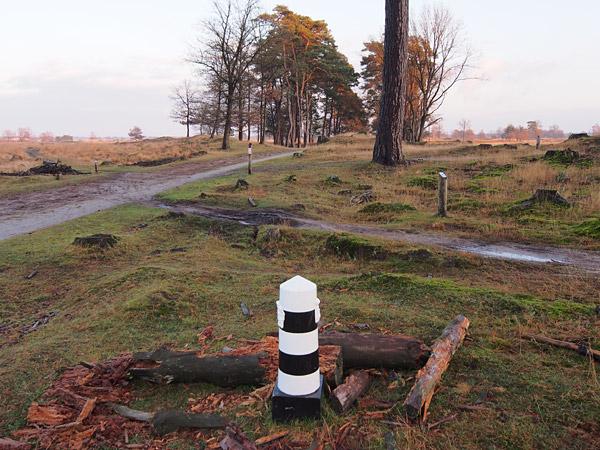 De Kale Duinen ten zuiden van Appelscha is favoriet bij wandelaars en MTB'ers.