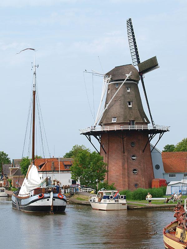 Burdaard Markant Friesland