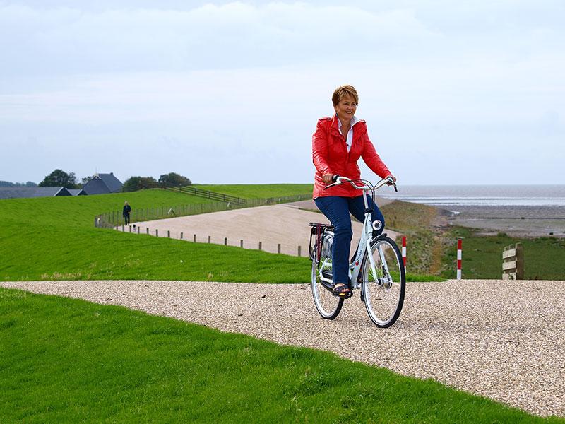 De Friese Waddenzee en kust zijn een attractie dankzij hun natuurlijkheid en culturele oorspronkelijkheid, zonder overdreven toerisme.