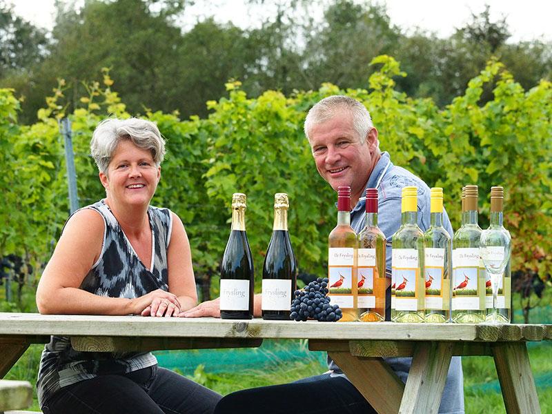 Jantiene en Douwe Broersma hebben onder andere via Facebook een hele schare druivenplukkers opgetrommeld om de Suzuki-vlieg geen kans te geven grote schade aan te richten in hun wijngaard.