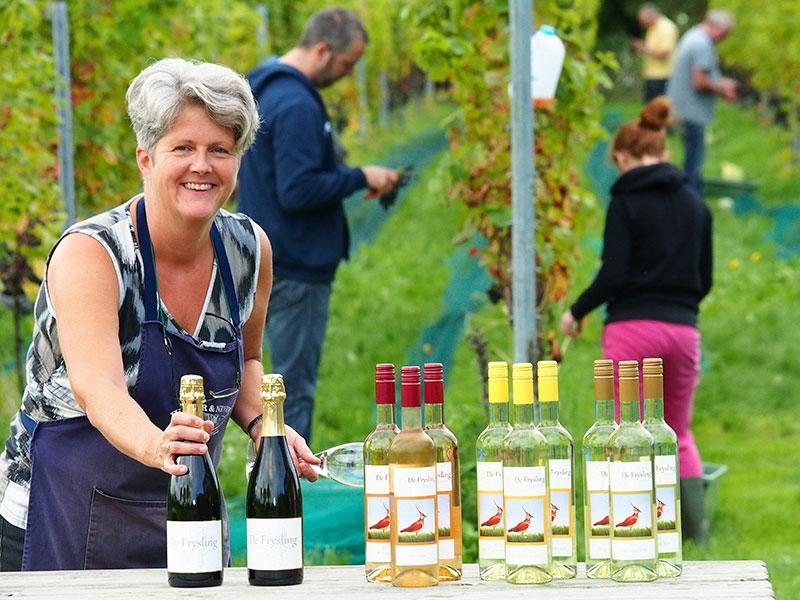 """Jantiene Broersma en haar man zijn al vijf jaar """"wijnboer"""" en hebben al een aardige collectie in de handel. Ze exporteren onder andere naar de Verenigde Staten waar """"Friezen om utens"""" nieuwsgierig zijn naar de wijn """"fan Fryske grûn"""". Zij leggen graag uit hoe hun wijnen worden gemaakt en organiseren proeverijen. Kunstenaars geven in de wijngaard workshops. Voor vakantiegangers is een gastenverblijf in een authentiek """"wâldhûske"""" gecreëerd."""