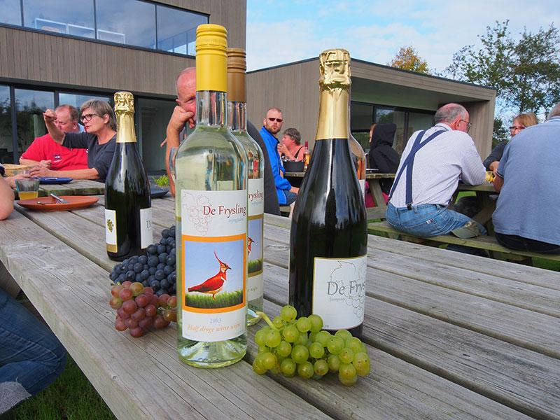 Van de druiven van De Frysling worden smaakvolle witte wijnen, roséwijnen en mousserende wijnen gemaakt.
