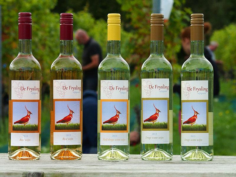 Een gekleurde kievit siert de etiketten op de wijnflessen van De Frysling.