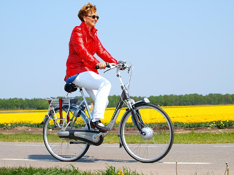 grote verschillen in elektrische fietsen zichtbaar op show. Black Bedroom Furniture Sets. Home Design Ideas