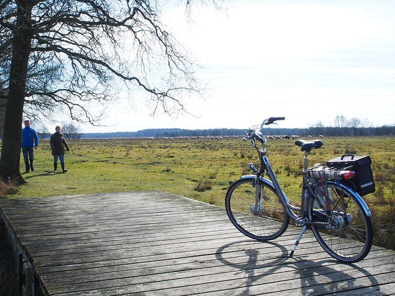 De duurste elektrische fiets uit Pointer's E-line serie is geen allemansvriend, maar dat wil niet zeggen dat de fiets niet deugt. Het karretje presteert bovengemiddeld, al is ie niet goedkoop: €1.899,-. Voor dat geld heb je ook een A-merk met minder problematische bediening.