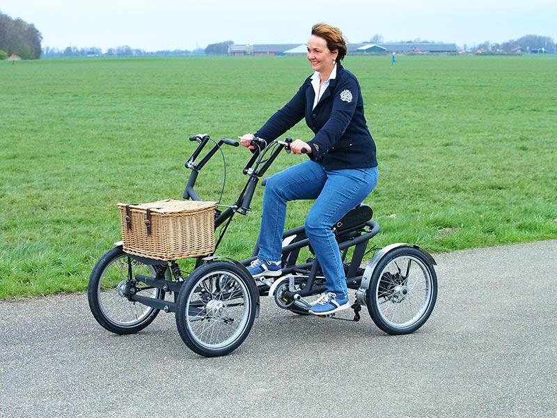 elektrische fietsen uit binnen en buitenland op grote. Black Bedroom Furniture Sets. Home Design Ideas