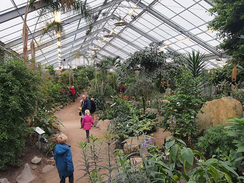 Tropisch paradijs, dieren- en vlindertuin 'De Orchideeënhoeve', Oosterringweg 34, Luttelgeest (Noordoostpolder). Meer info: www.orchideeenhoeve.nl