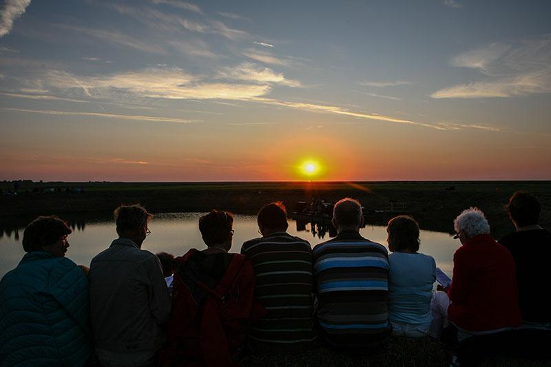 De Sing-In in het buitendijkse veld bij Seedykstertoer trok vorig jaar ruim 400 bezoekers.