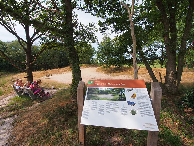 Zandverstuiving en heideveld De Kiekenberg in Nieuwehorne.© Albert Hendriks Friesland Holland Nieuwsdienst