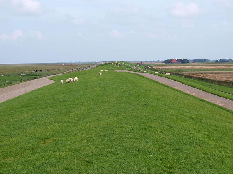 De buurtschap Zwarte Haan in Friesland aan de Waddenzee. Foto: © Albert Hendriks Friesland Holland Nieuwsdienst.